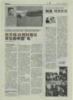 17_shanghai-weekly-01-aout-02_v2.jpg